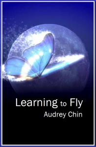 Learning to Fly Cover 2