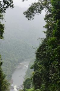 Rains-soaked view of a river off the Palmerston Highway